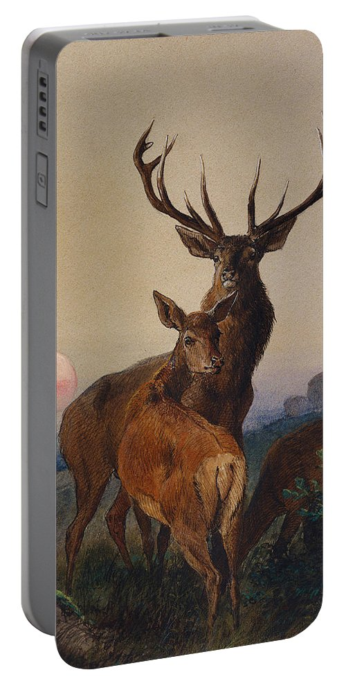 Stag Portable Battery Charger featuring the painting A Stag With Deer In A Wooded Landscape At Sunset by Charles Jones