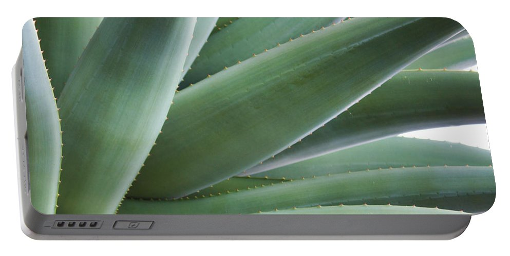 Cactus Portable Battery Charger featuring the photograph A Succulent Life by Barbara McMahon