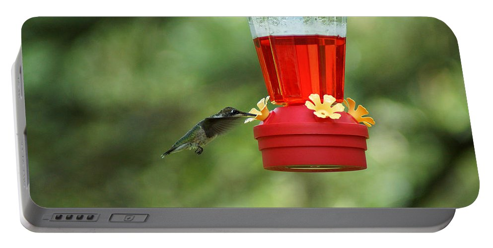 A Ruby-throated Hummingbird Portable Battery Charger featuring the photograph A Tiny Little Ruby-throated Hummingbirds by Kim Pate