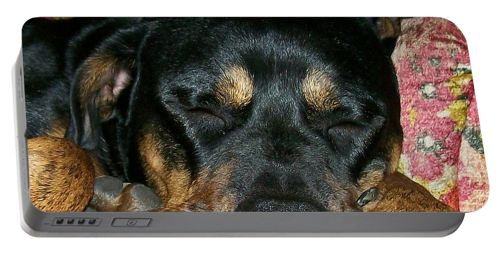 Rottweiler Portable Battery Charger featuring the photograph A Tired Boss by Sara Raber