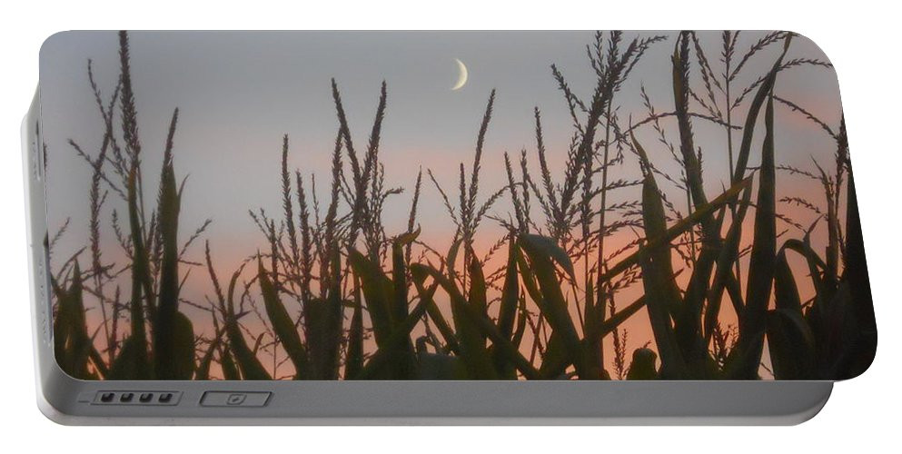 Corn Portable Battery Charger featuring the photograph A Touch Of Pink by Coleen Harty