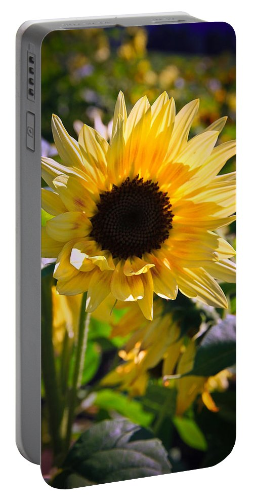 Sunflower Portable Battery Charger featuring the photograph A Touch Of Sunflower by Athena Mckinzie