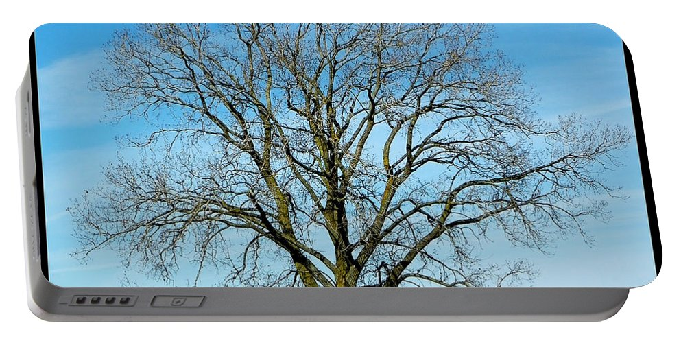 Tree Portable Battery Charger featuring the photograph A Tree In Fall... by Tim Fillingim