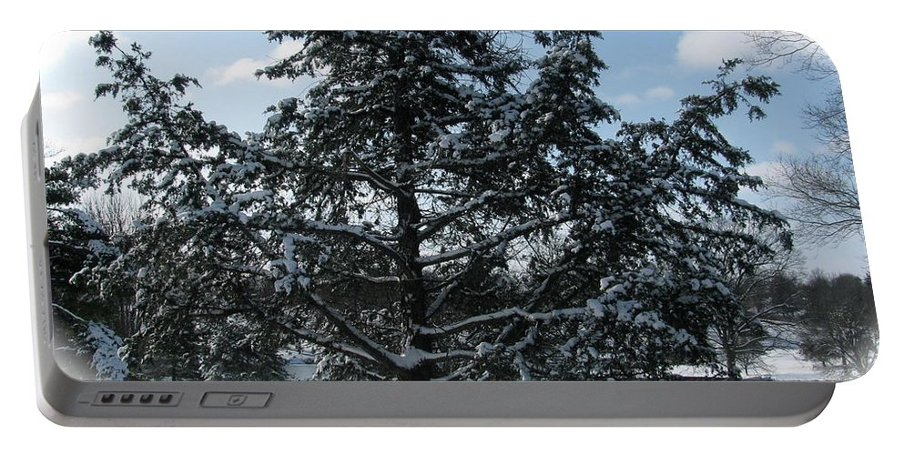 Landscape Portable Battery Charger featuring the photograph A Tree In Winter by Sherri Williams