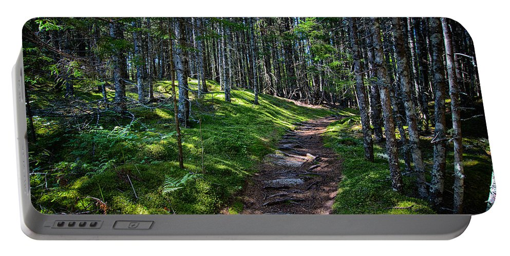 Maine Portable Battery Charger featuring the photograph A Walk In The Woods by John Haldane
