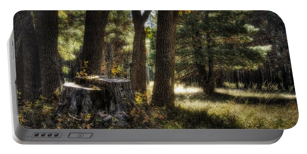 Arizona Portable Battery Charger featuring the photograph A Walk In The Woods by Saija Lehtonen