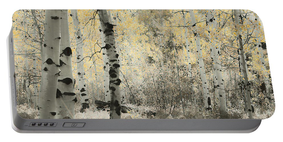 Aspens Portable Battery Charger featuring the photograph A Wisp Of Gold by Don Schwartz