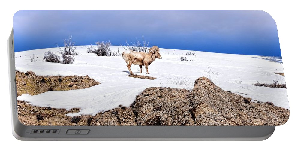 Hoback Junction Portable Battery Charger featuring the photograph Above The Rocks by Image Takers Photography LLC - Laura Morgan