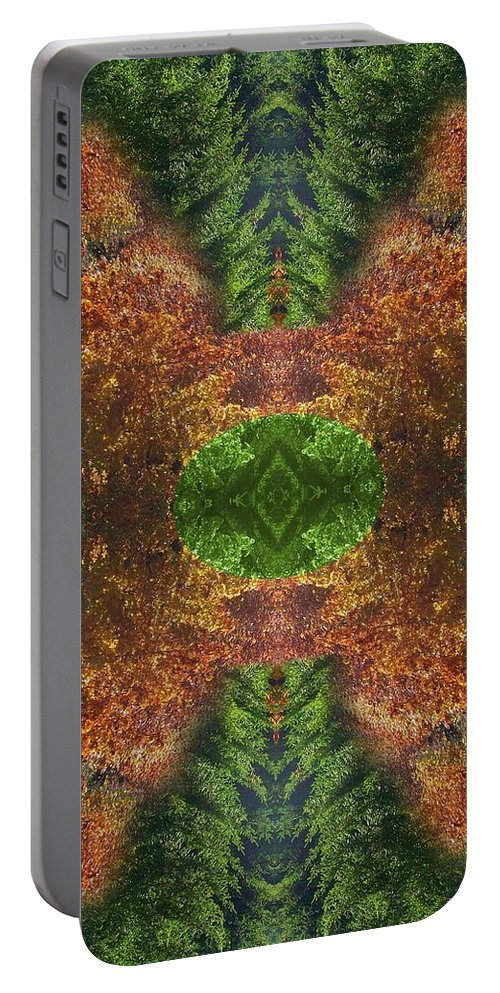 Original Portable Battery Charger featuring the photograph Abstract 164 by J D Owen