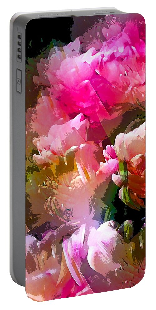 Abstract Portable Battery Charger featuring the photograph Abstract 272 by Pamela Cooper