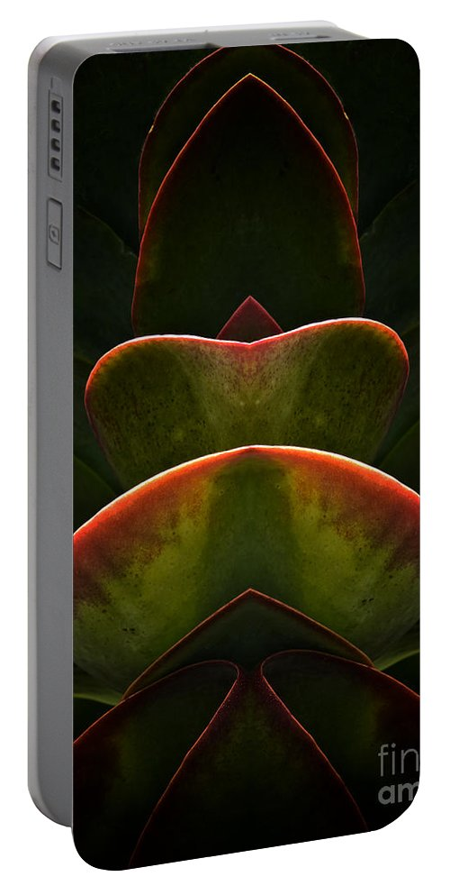 Abstract Portable Battery Charger featuring the photograph Nature In Abstract Succulent Plant 1 by Mike Nellums