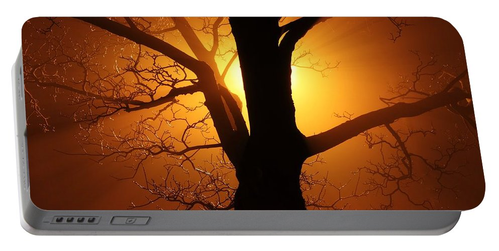 Clearing Portable Battery Charger featuring the photograph Abstract Tree by FL collection