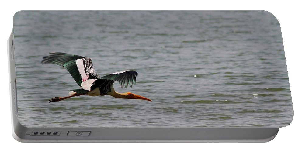 Painted Stork. Flying Bird Portable Battery Charger featuring the photograph Aerial Survey Painted Stock In Flight by Ramabhadran Thirupattur