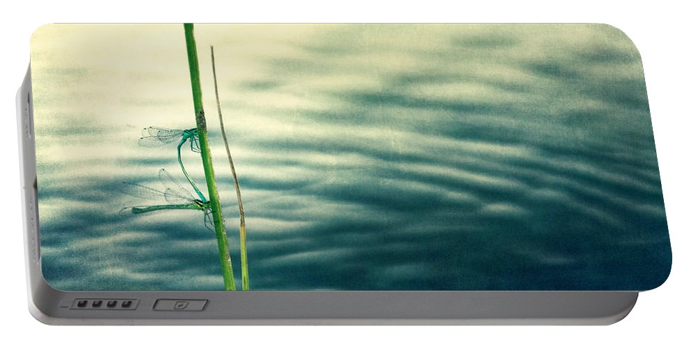 Damselfly Portable Battery Charger featuring the photograph Affections by Priska Wettstein