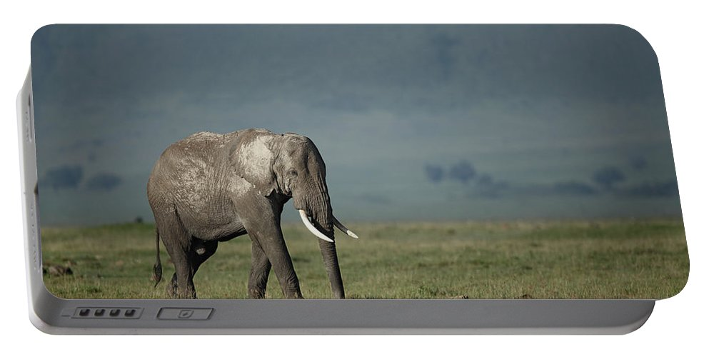 Wildlife Portable Battery Charger featuring the photograph African Elephant by Paul E Tessier