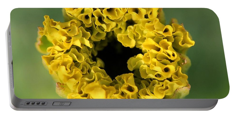 Mccombie Portable Battery Charger featuring the photograph African Marigold Named Crackerjack Gold by J McCombie