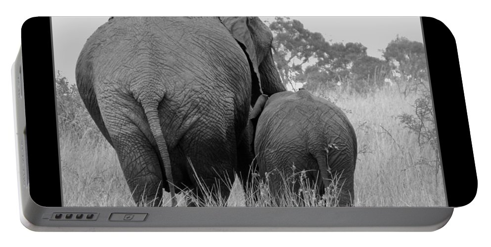 Africa Portable Battery Charger featuring the photograph African Safari Elephants 3 by Jeff Brunton