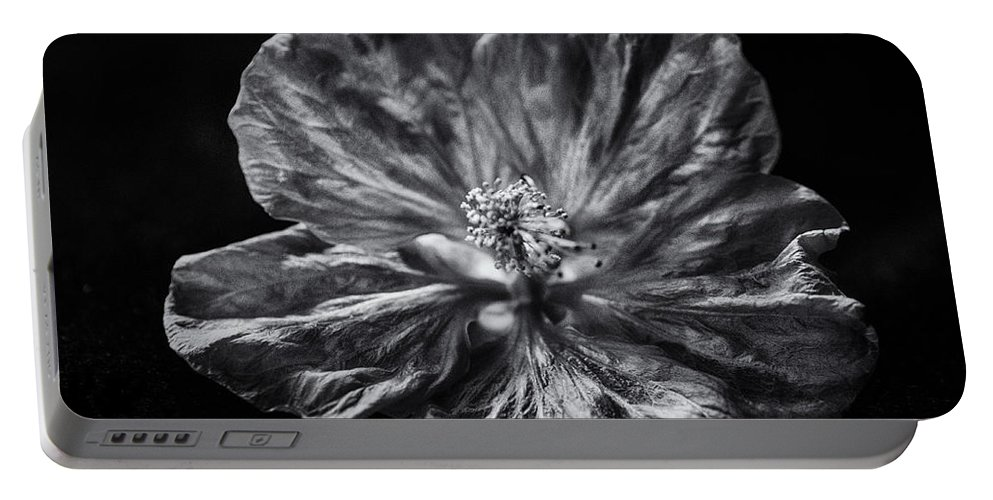 Flower Portable Battery Charger featuring the photograph After Dark by Susan Capuano