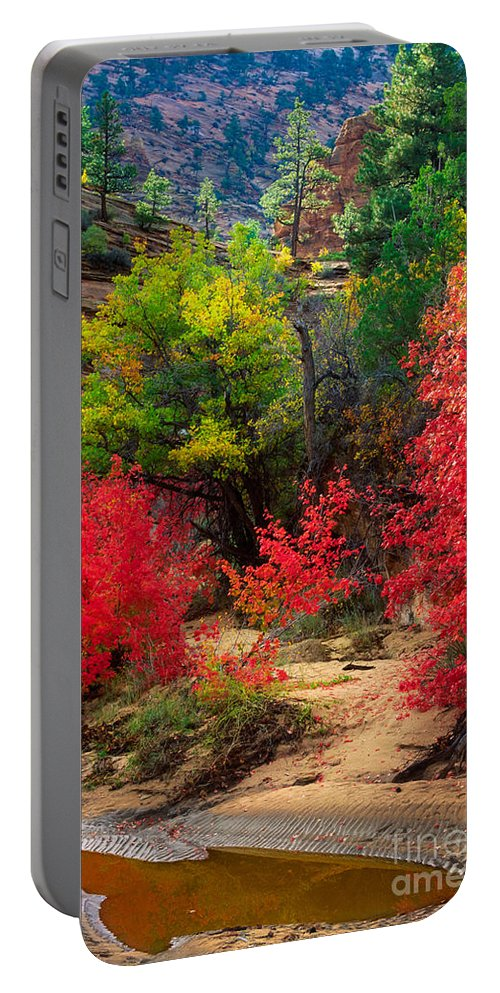 America Portable Battery Charger featuring the photograph After The Flood by Inge Johnsson