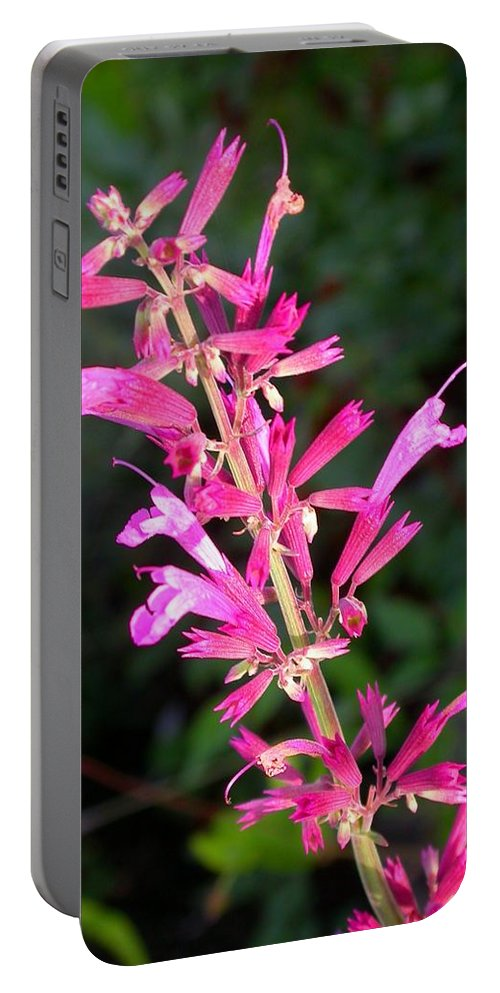 Agastache Ava Portable Battery Charger featuring the photograph Agastache Ava by Cynthia Wallentine