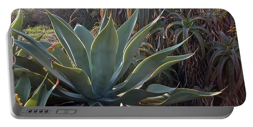 Agave Portable Battery Charger featuring the photograph Agave by Douglas Barnett