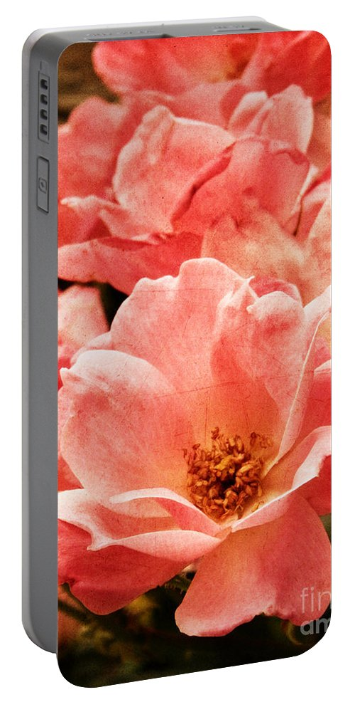 Rose Portable Battery Charger featuring the photograph Aged Rose by Andrea Anderegg