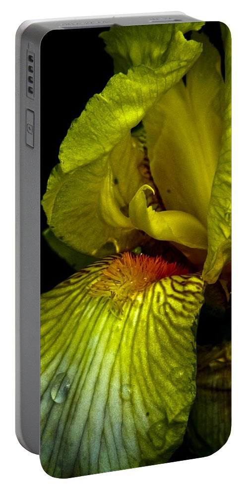 Iris Portable Battery Charger featuring the photograph Aieris by Joel Loftus