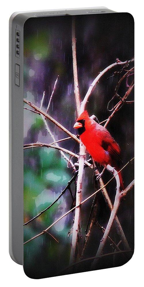 Bird Portable Battery Charger featuring the photograph Alabama Rain - Cardinal by Travis Truelove