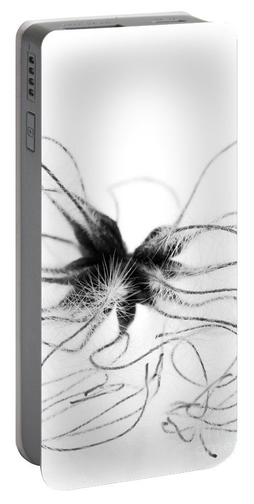 Botanical Portable Battery Charger featuring the photograph Alien by Anne Gilbert