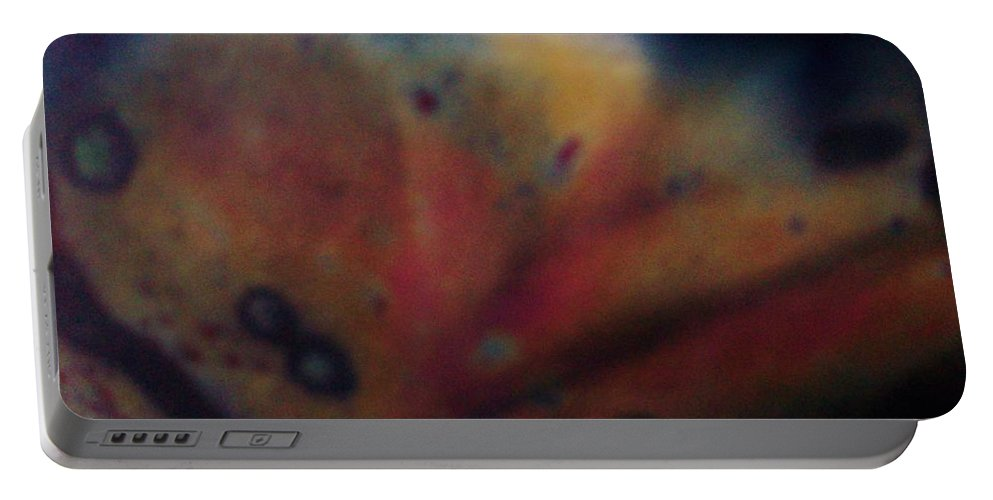 Fish Portable Battery Charger featuring the photograph Alien Sea Life by Sharon Ackley