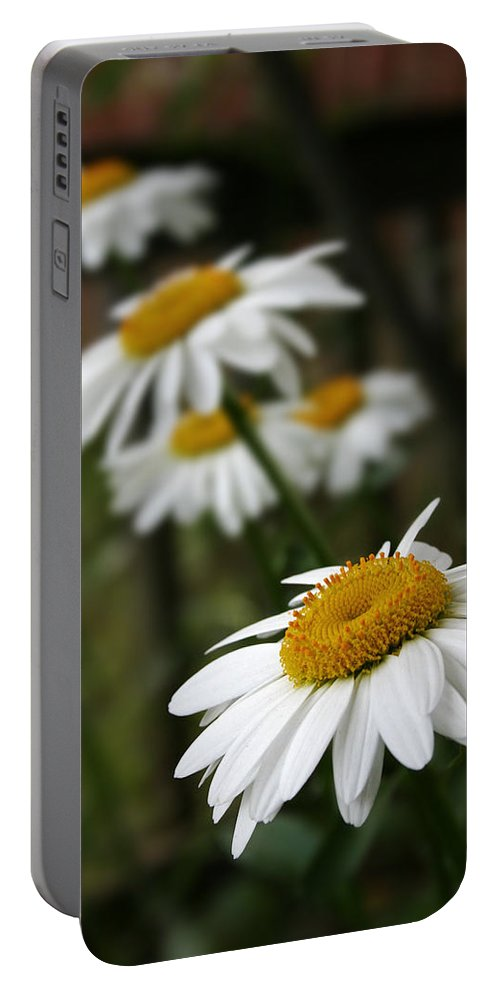 Daisy Portable Battery Charger featuring the photograph All In A Row by Susan McMenamin