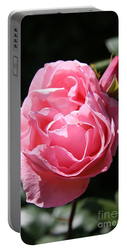 Rose Portable Battery Charger featuring the photograph All Shades Of Pink by Christiane Schulze Art And Photography