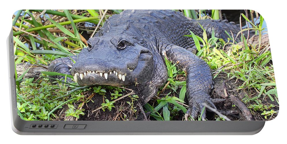 Mississippiensis Portable Battery Charger featuring the photograph Alligator Overbite by Rudy Umans