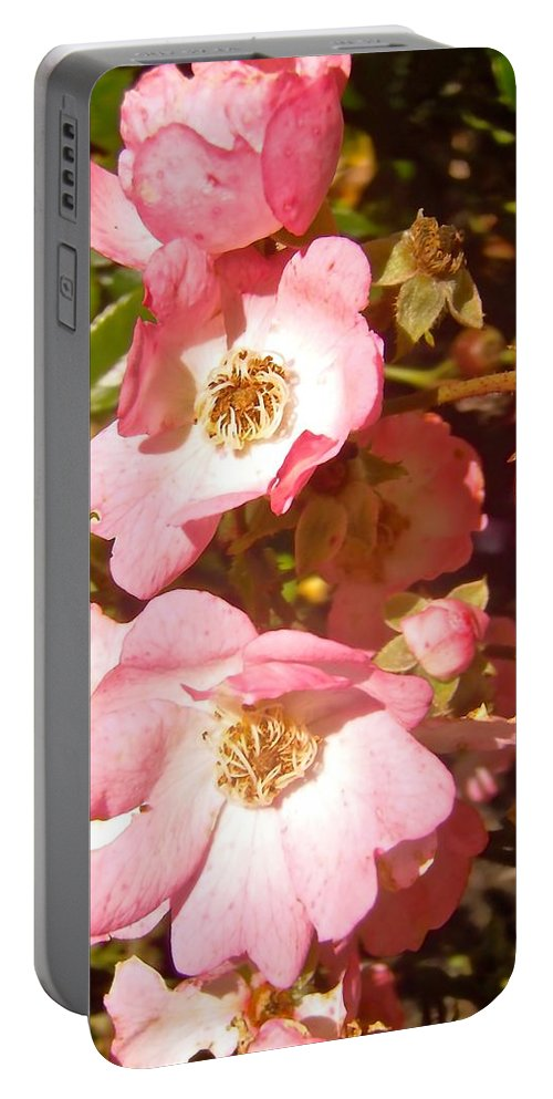 Roses Portable Battery Charger featuring the photograph Almost Over by Stephanie Moore