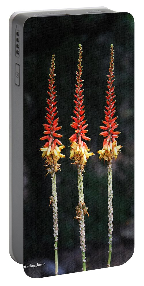 Aloe Vera Blooms X Three Portable Battery Charger featuring the photograph Aloe Vera Blooms X Three by Tom Janca
