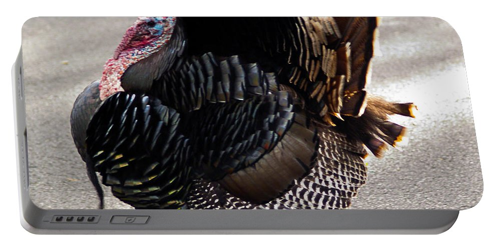 Fine Art Photography Portable Battery Charger featuring the photograph Aloha Turkey II by Patricia Griffin Brett