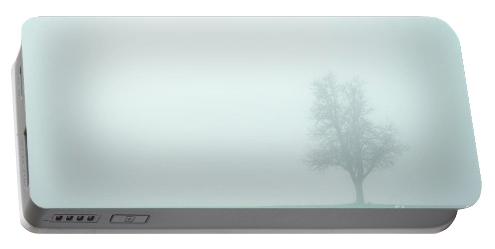 Austria Portable Battery Charger featuring the photograph Alone In The Fog - Green by Hannes Cmarits