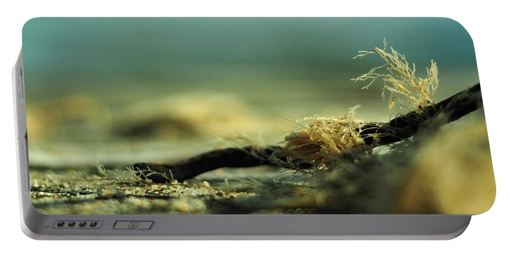 Chesapeake Bay Portable Battery Charger featuring the photograph Along The Sea-coast by Rebecca Sherman