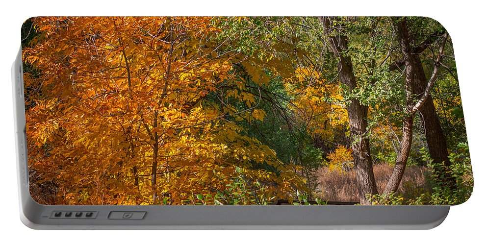 Tree Portable Battery Charger featuring the photograph Along The Trail by Ernie Echols