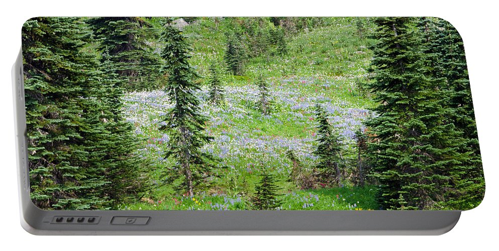 Hiking Portable Battery Charger featuring the photograph Alpine Meadow by Tikvah's Hope