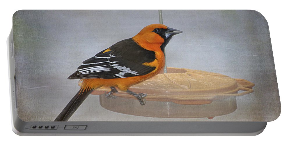 Altamira Oriole Portable Battery Charger featuring the photograph Altamira Oriole by TN Fairey