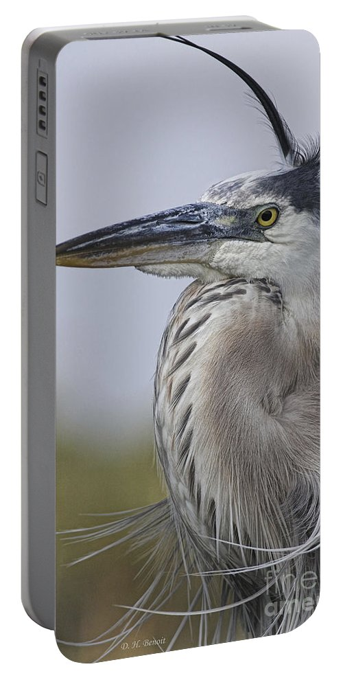 Blue Heron Portable Battery Charger featuring the photograph Am I Gorgeous by Deborah Benoit