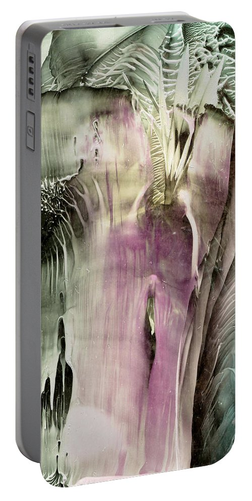 Wax Portable Battery Charger featuring the painting Ambrosia by Cristina Handrabur