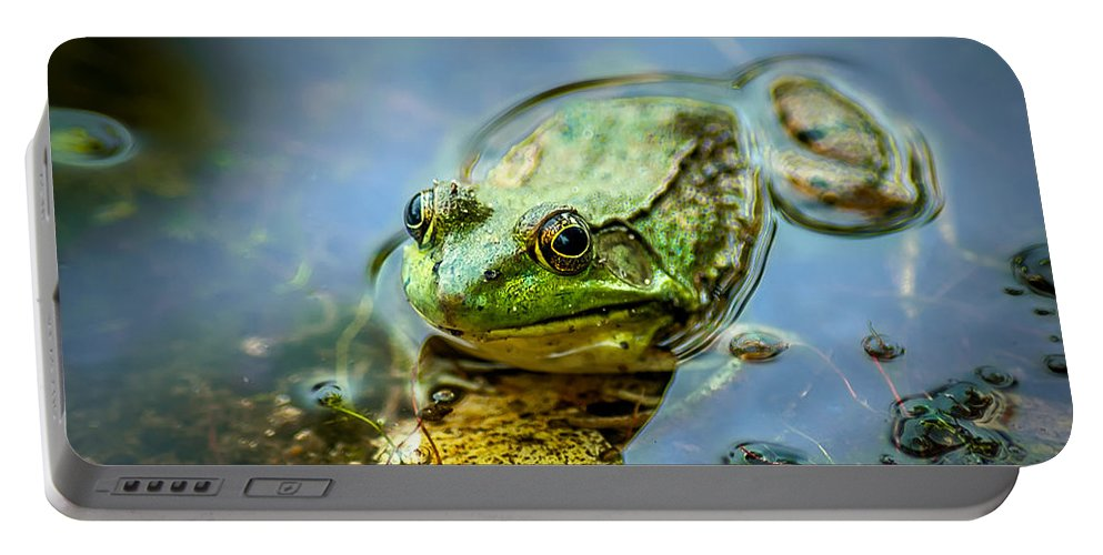 Optical Playground By Mp Ray Portable Battery Charger featuring the photograph American Bull Frog by Optical Playground By MP Ray