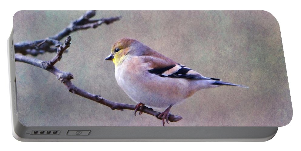 Bird Portable Battery Charger featuring the photograph American Goldfinch 2 by Deena Stoddard