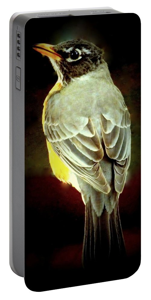 Birds Portable Battery Charger featuring the photograph American Robin by Karen Wiles