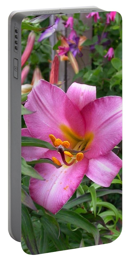 L. Amethyst Temple Portable Battery Charger featuring the photograph Amethyst Temple by Cynthia Wallentine