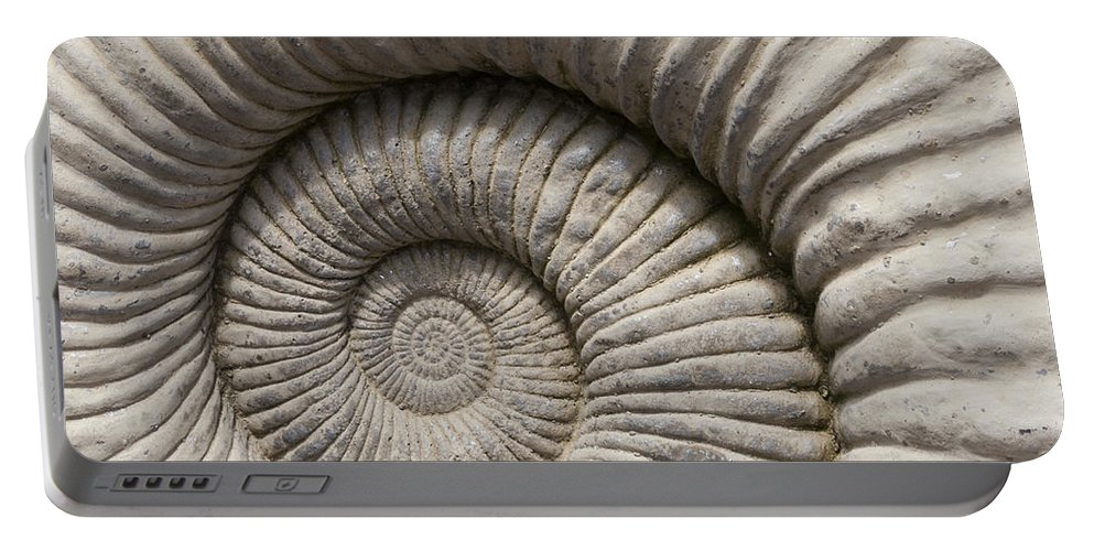 Shell Portable Battery Charger featuring the photograph Ammonites Fossil Shell by Gillian Dernie