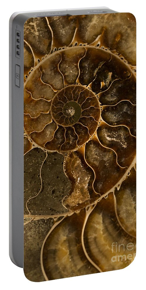 Ammonite Portable Battery Charger featuring the photograph An Ancient Ammonite Pattern II by Jaroslaw Blaminsky
