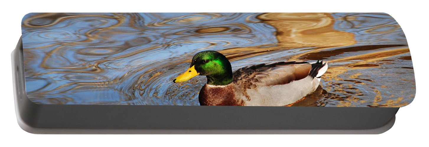 Autumn Portable Battery Charger featuring the photograph An Autumn Swim by Frozen in Time Fine Art Photography